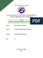 Comparación Entre La Ley 13253 y La Ley 28951 y Peritaje Contable Judicial
