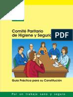 Constitucion Del Comite Paritario de Higiene y Seguridad