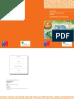 Recurso Cuaderno de Trabajo 05012012105312