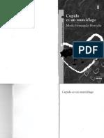 cupido-es-un-murcielagopdf (1).pdf