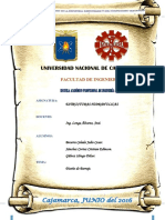 Informe-Barraje .pdf