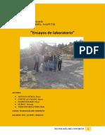 ENSAYO DE LABORATORIO DE TECNOLOGÍA DE CONCRETO
