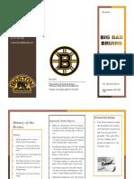 the bruins brochure
