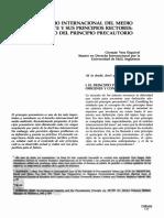 El Derecho Internacional Del Medio Ambiente y Sus Principios Rectores. El Caso Del Principio de Precaución