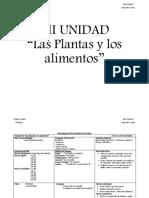 PROGRAMACIÓN  VII  FINNNNN (3).docx