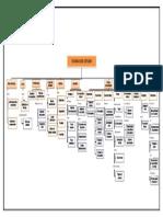 Mapa Conceptual Técnicas de Estudio