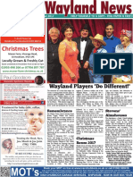 The Wayland News November 2017