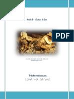 aculturadagare-110503051422-phpapp01