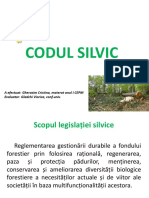 Codul silvic.pptx