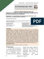 Revista Brasilera Investigacion de Gendarmeria Argentina