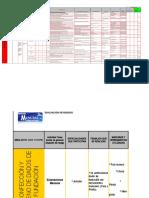Matriz Evaluacion de Riesgos (1)