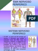 Sistema Nervioso Periferico1893