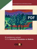 El problema actual de los Incendios Forestales en Galicia - COSE