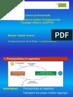 2015 COURS LP Agepur Photosynthèse