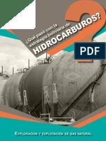 ESTRATEGIA DE HIDROCARBUROS