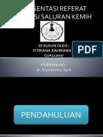 161974117-ISK-ppt.pptx
