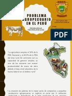 Problema Agropecuario en El Perú