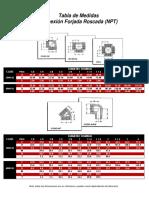 conexforjadas1.pdf