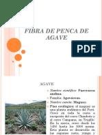 10.-Fibra de Maguey