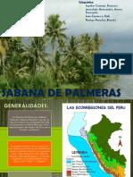 Sabana de Palmeras