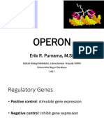 Operon System