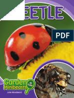 Garden Minibeasts Up Close - Beetle.pdf