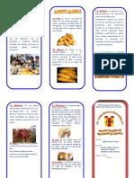 Los Alimentos Saludables Cajamarca