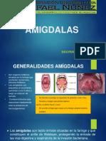 amigdalas-160324194355