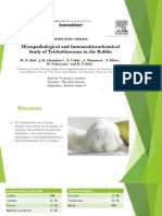Analisis Tisular 2 - Seminario 14