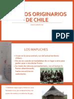 Pueblos OriginariosZCS