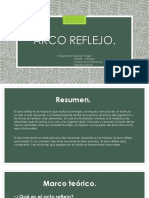 Arco Reflejo Ppt