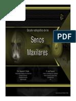 senosmax