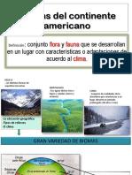 Biomas Del Continente Americano