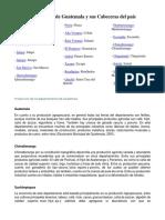 Cabeceras de Los Departamentos de Guatemala