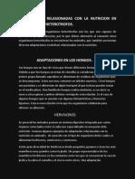 Adaptasiones Relasionadas Con La Nutricion en El Organismo Heterotrofos