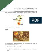 Bagian_-_bagian_Tumbuhan_dan_Fungsinya.pdf