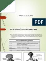 Artrologia - Articulaciones