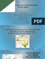 edu 417 cognitive studies capstone