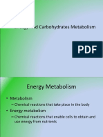 Carbohydrates Metabolism