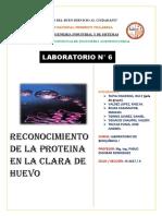 Informe n6 de Lab. de Bioquimica