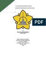 literatur jurnal.docx
