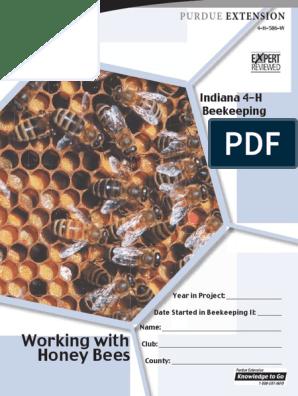 4H - Beekeeping Basic Manual
