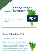 APIO2017 (1)