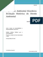 1991 Resenha Livro - Legislação ambiental brasileira. subsídios para a história do direito ambiental
