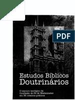 Estudo Doutrinario.pdf