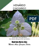 Madrinha Maria Alice - O Rosario
