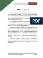 112370921 Reestructuracion Patrimonial e Insolvencia Final
