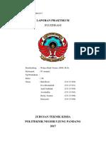 LAP. MANJA FLUIDISASI KEL 4.docx