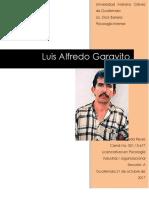Investigación Luis Alfredo Garavito