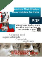 Flexibilizacao_AEVN